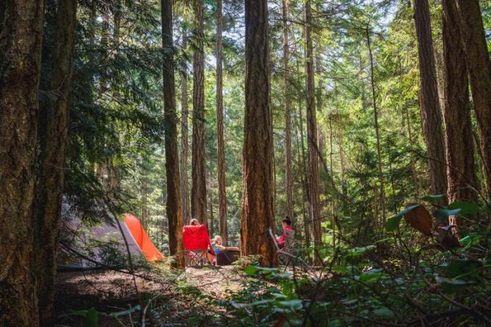 cliomakeup-guida-vacanze-in-campeggio-bosco
