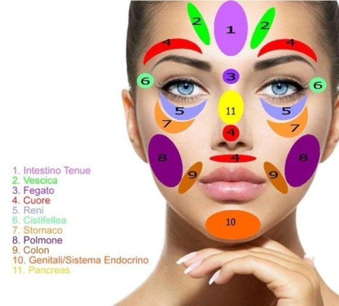 cliomakeup-riflessologia-facciale-mappa