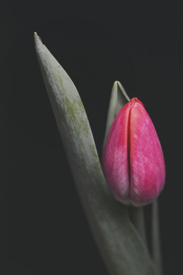 cliomakeup-spotting-mestruazioni