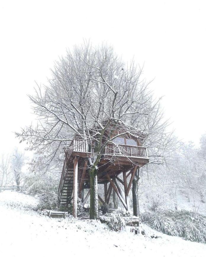 cliomakeup-case-sull-albero-italia-aromantica-treehouse