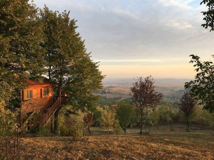 cliomakeup-case-sull-albero-italia-tenuta-montegrande