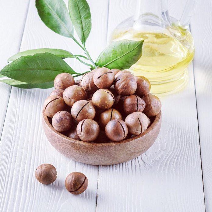 cliomakeup-olio-macadamia-teamclio-9