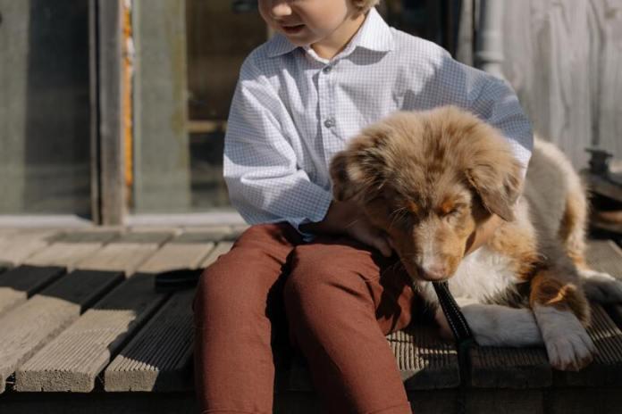 cliomakeup-animali-domestici-bambini-accarezzare