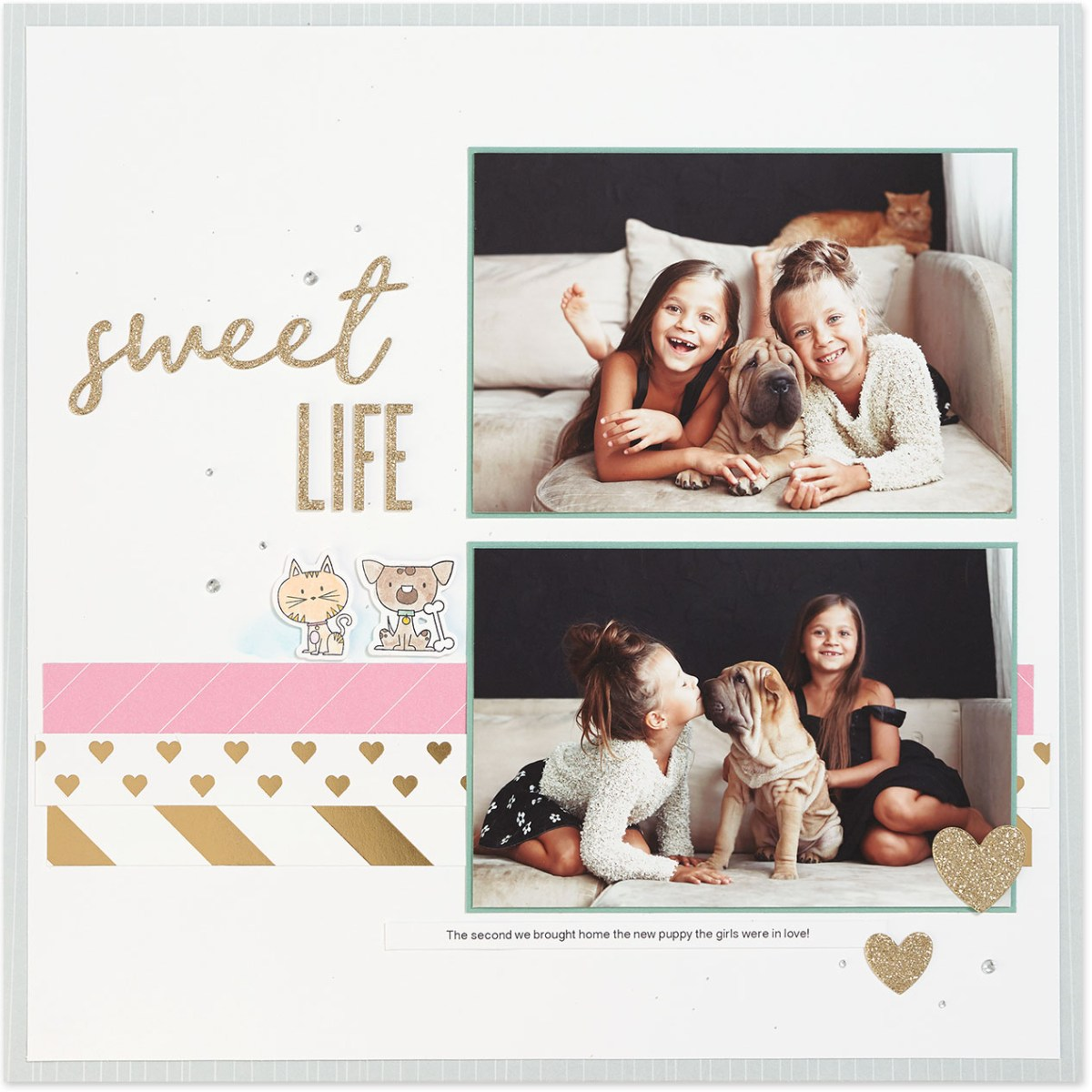 Punny Pals in Scrapbooking #ctmh #closetomyheart #scrapbooking #punnypals #thincuts #watercolor #watercolour #cat #kitty #dog #doggie #sweet #life #layout #operationsmile