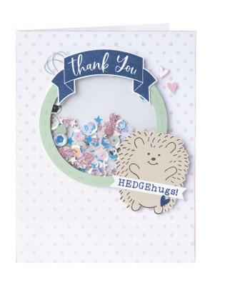 hedgehugs-shaker-window-card