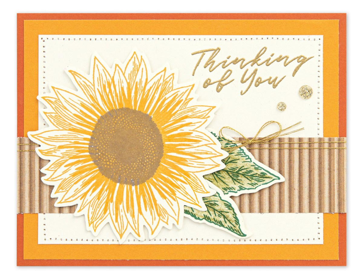 Basic Stamping Techniques #ctmh #closetomyheart #ctmhnsm #nationalstampingmonth #stampingtechniques #cardmaking #thinkingofyou #sunflower #embossing #watercolorpencils