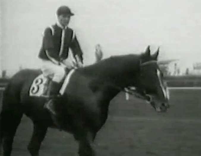 Apelle, the First of the Great Italian Horses