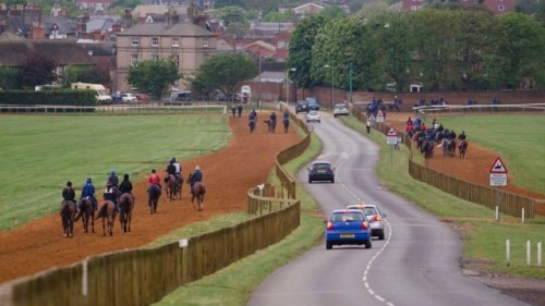 Newmarket the city of horses