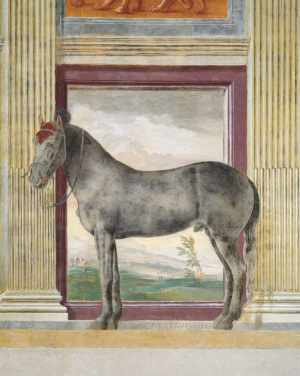 Hall of the Horses