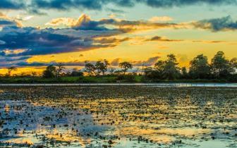 Pescaria em Corumbá: as delícias da pesca no Pantanal