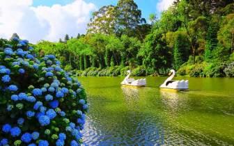 Já conhece a Rota Romântica no Rio Grande do Sul?