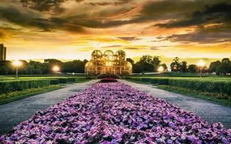 Os melhores pontos turísticos para visitar em Curitiba