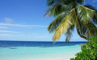 Arrume as malas para se encantar com as belezas de Isla Palma
