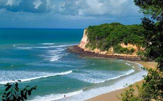Cinco praias ideais para quem gosta de surfar