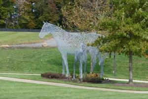 northeast_2018_horses
