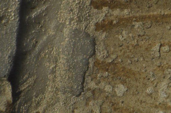 Detail of the Morgan Cup (52.1.93) as seen under a microscope