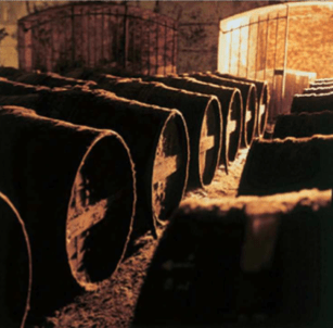 Paradise Cellar Remy Martin