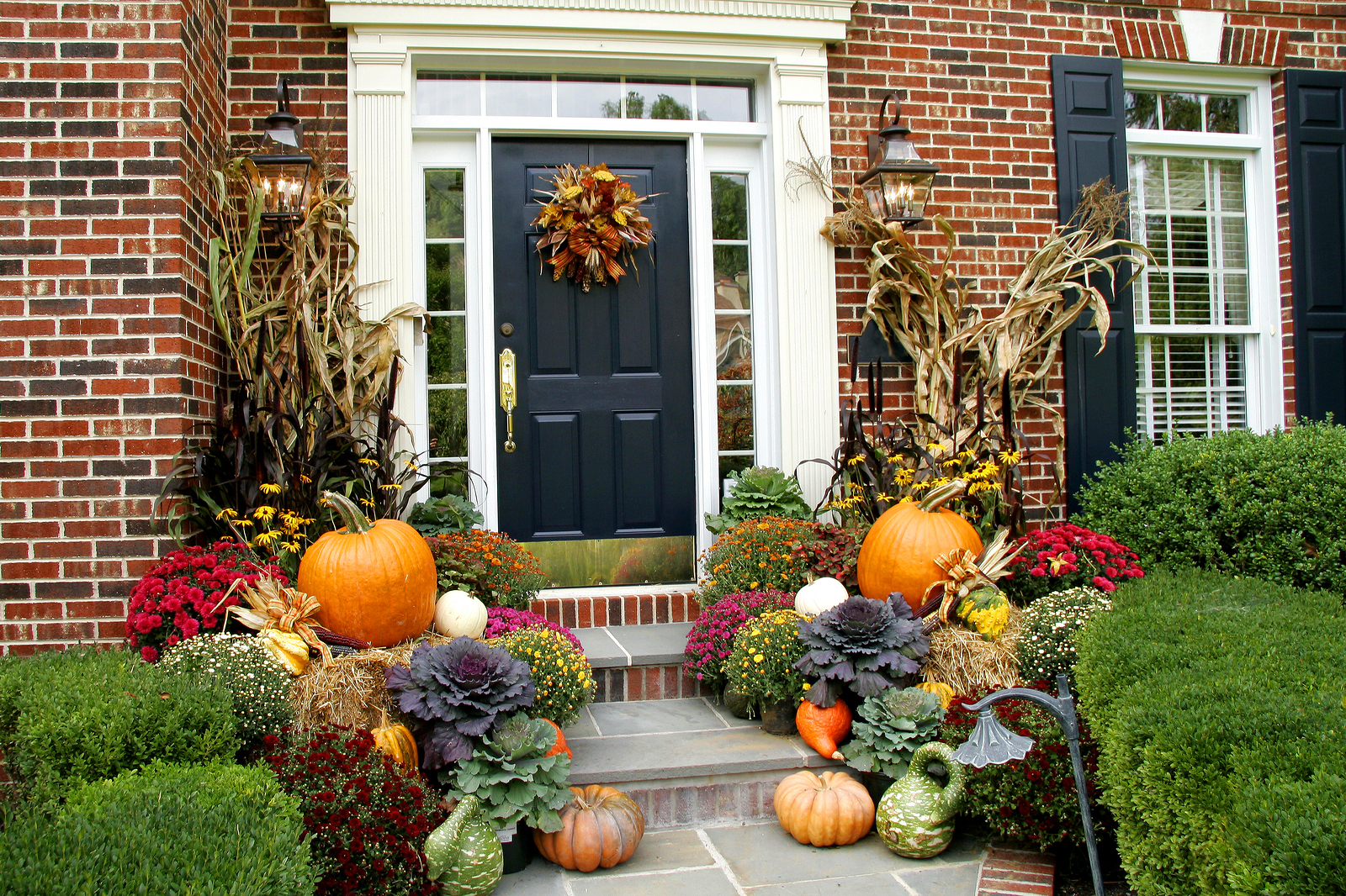 Traditional brick colonial dressed up for fall with colorful mums and harvest gourds