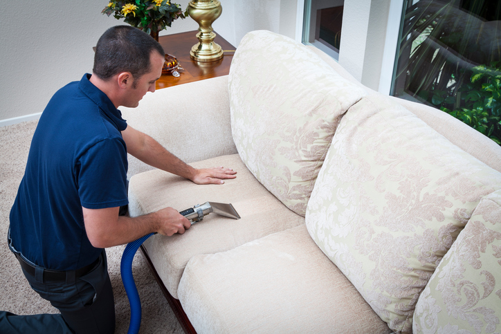 Cleaning Sofa Pillow