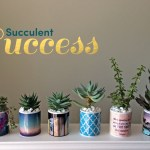 DIY: Use our custom mugs as perfect indoor planters