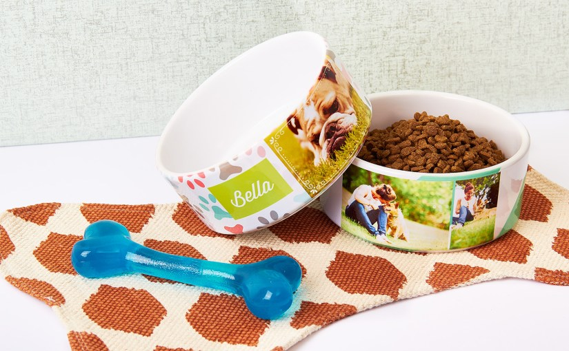 Make one of our new custom dog and cat bowls today
