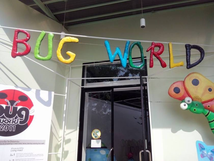Bug World