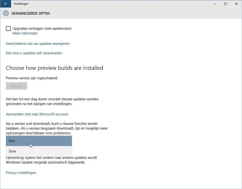 Langzame updates verkleinen het risico op ongewilde digitale avonturen na een Windows update.