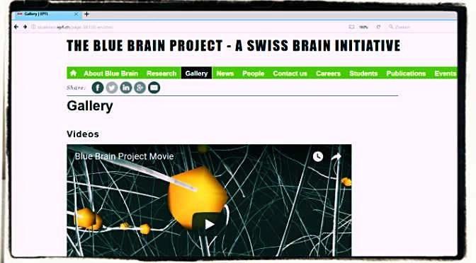 The Blue Brain Project moet uiteindelijk leiden tot digitale menselijke hersens