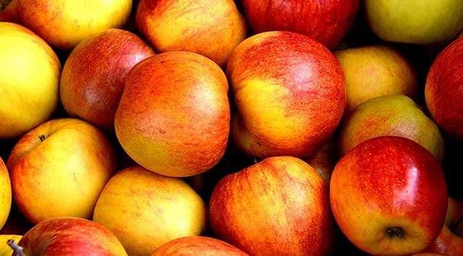12 september is D-Day voor liefhebbers van Apple (bron afbeelding: https://www.pexels.com/photo/red-apple-fruits-162806/)