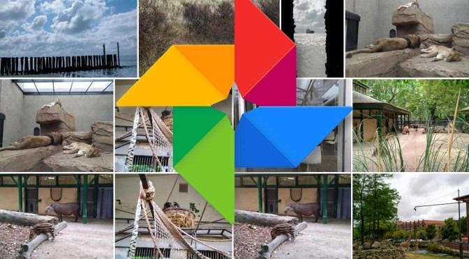 Foto's terugvinden in Google Foto's, ook hele oude…
