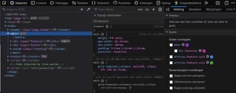 Schermafbeelding van De ontwikkelaarshulpmiddelen van Firefox.