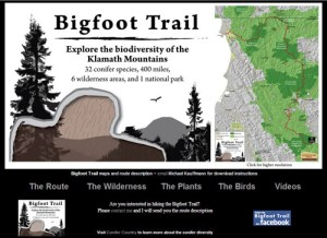 THE BIGFOOT TRAIL is a 400 mile hike through the Klamath Mountains. Sights include 32 conifer species, 6 wilderness areas, and 1 national park.