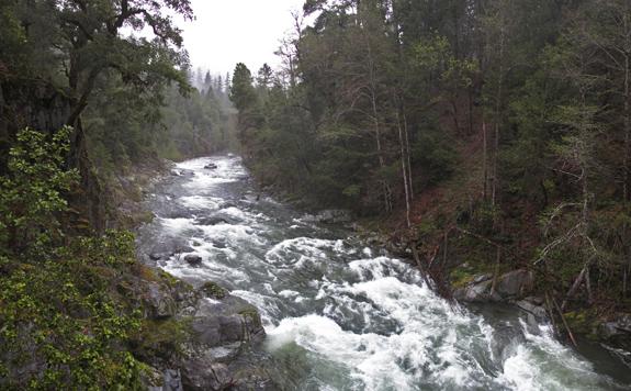Wooley Creek