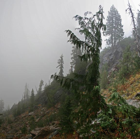 alaska-fog2