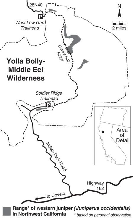 western-juniper-range