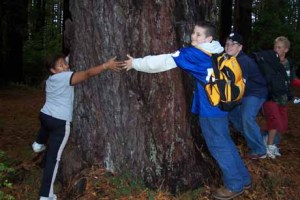 Creating a generation of tree huggers in 2004