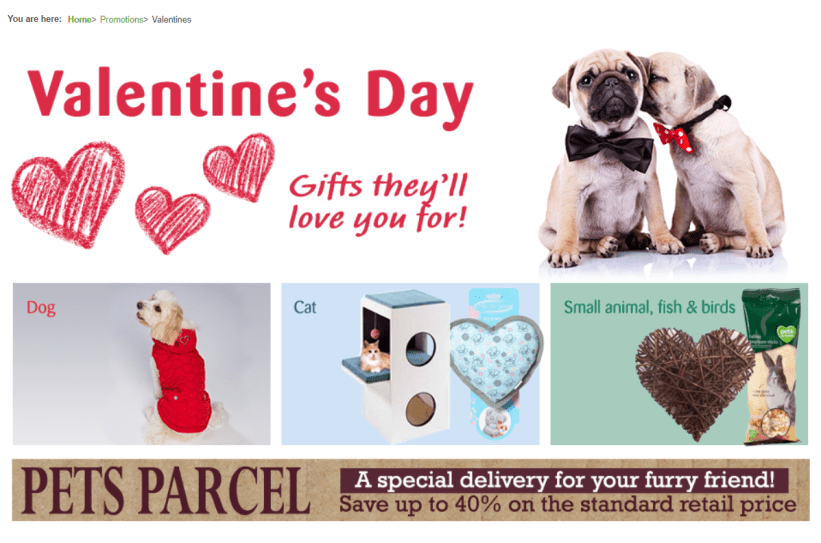 Valentine's Day promotion ideas for Pets