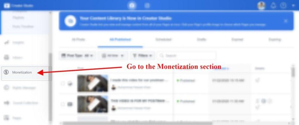 monitize section