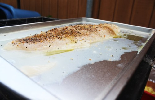Swai fillet, the length of a smaller cookie sheet, sitting in lemon juice and olive oil with a covering of lemon pepper, pepper and a wee bit of salt.