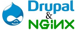 Durpal and Nginx