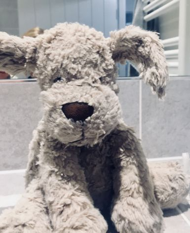 The much loved 'Dog' - Cotswold Baby Co