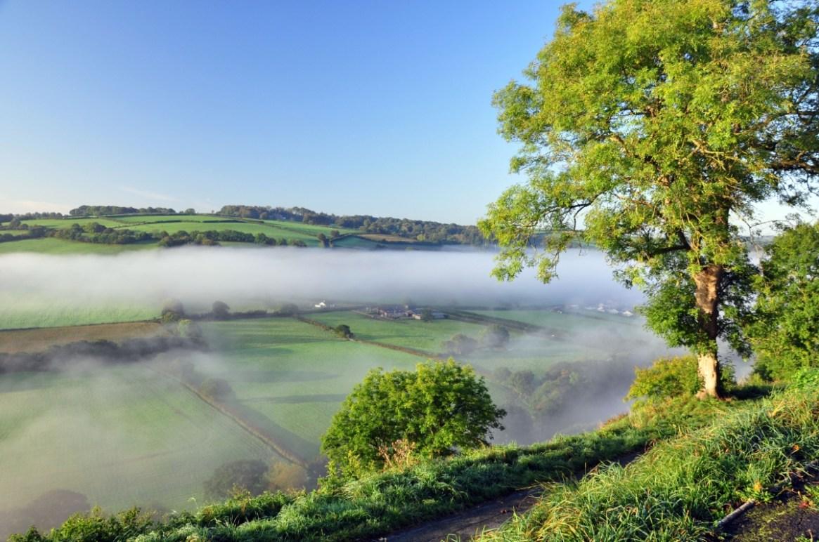 The Torridge Valley and Henry Williamson