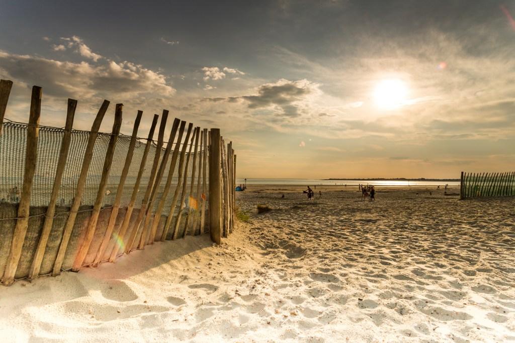 Dog friendly beach Sussex