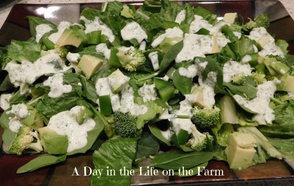 Shades of Green Salad