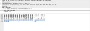 wireshark_packet11
