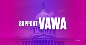 Support VAWA written over image of the Capital