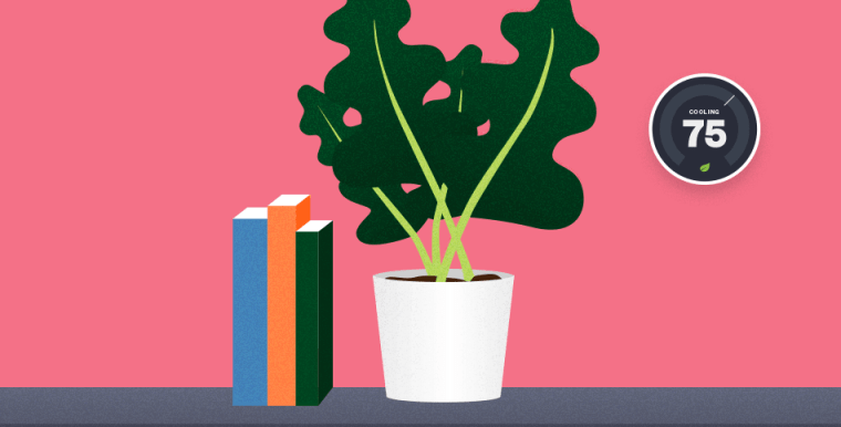 Illustration of plants and books on shelf with thermostat on the wall