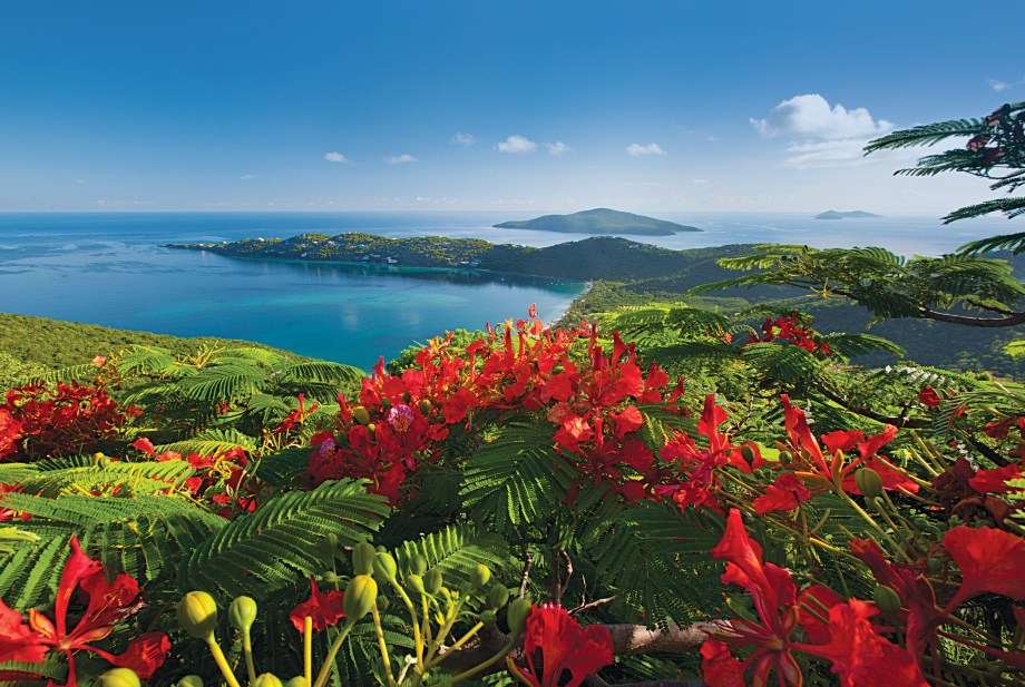 Beautiful Caribbean Islands