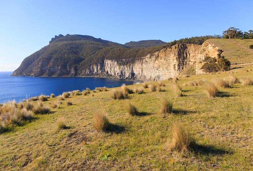 Visit Fossil and Painted Cliffs at Maria Island