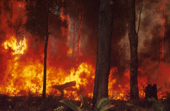 Our new research could could go a long way towards saving lives and properties from the threat of future bushfires.